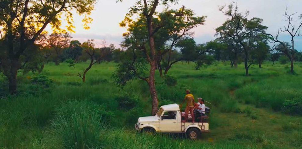 Bardia Jungle Safari 3 nights 4 days